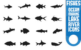 Sistema animal del icono imagenes de archivo