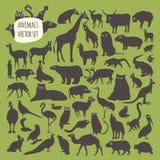 Sistema animal del icono Imagen de archivo libre de regalías