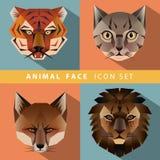 Sistema animal del icono de la cara Imagen de archivo libre de regalías