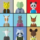Sistema animal del icono del avatar Fotografía de archivo libre de regalías