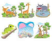 Sistema animal del vector, Fox, jirafa, hipopótamo, camaleón, medusa, canguro, ilustración del vector