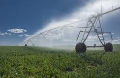 Sistema antincendio del perno del centro di irrigazione del raccolto Fotografia Stock