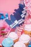 Sistema azul y rosado de lujo de la tabla Fotos de archivo libres de regalías