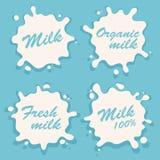 Sistema blanco del vector de la mancha blanca /negra del chapoteo de la leche Elemento de la bebida libre illustration