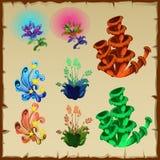 Sistema brillante de plantas y de otros regalos naturales ilustración del vector