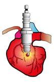 Sistema cardiaco Foto de archivo libre de regalías