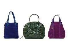 Sistema colores de los bolsos de las mujeres de diversos Imagen de archivo libre de regalías