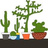 Sistema colorido con el cactus en pote Fotos de archivo libres de regalías