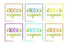 sistema colorido orgánico del 100% para la web y la impresión Tipografía exhausta de la mano en las hojas coloridas stock de ilustración