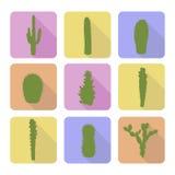 Sistema común del vector de iconos del cactus Fotografía de archivo