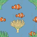 Sistema coralino de los pescados Foto de archivo libre de regalías