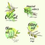Sistema creativo del diseño del logotipo del aceite de oliva Ilustración del vector Imágenes de archivo libres de regalías
