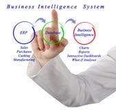 Sistema da inteligência empresarial Fotos de Stock Royalty Free