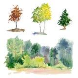 Sistema de árboles de la acuarela Fotografía de archivo libre de regalías