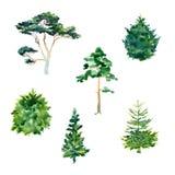 Sistema de árboles de la acuarela Fotos de archivo