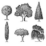 Sistema de árboles en siluetas Imagen de archivo libre de regalías