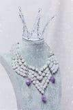Sistema de accesorios nupciales de la boda Fotografía de archivo