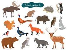 Sistema de animales del bosque en el fondo blanco ilustración del vector