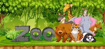 Sistema de animales del parque zoológico en selva ilustración del vector