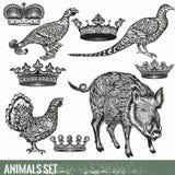 Sistema de animales dibujados mano detallada Fotos de archivo libres de regalías