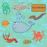 Sistema de animales marinos Colección del mar Imágenes de archivo libres de regalías
