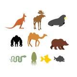 Sistema de animales salvajes en el fondo blanco Siluetas de animales Imagen de archivo