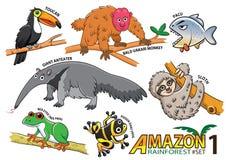 Sistema de animales y de pájaros lindos de la historieta en las áreas del Amazonas de Sou Fotografía de archivo libre de regalías