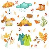 Sistema de asociado con Autumn Objects Imágenes de archivo libres de regalías