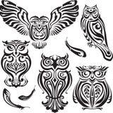 Sistema de búhos decorativos Fotografía de archivo libre de regalías
