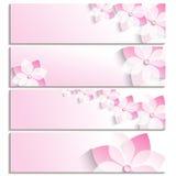 Sistema de banderas con el rosa floreciente de Sakura Fotos de archivo libres de regalías