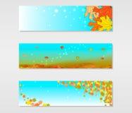 Sistema de banderas del vector con las hojas de arce coloreadas del otoño stock de ilustración
