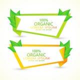 Sistema de banderas del vector con las hojas verdes frescas Eco Imagenes de archivo