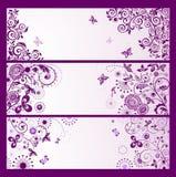 Sistema de banderas florales violetas horizontales del saludo Foto de archivo