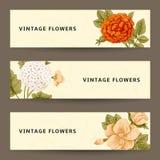 Sistema de banderas horizontales con las flores del vintage. Imagen de archivo libre de regalías