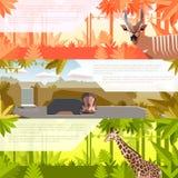 Sistema de banderas planas con los animales africanos stock de ilustración