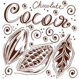 sistema de cacao en manos flojas con dejar, de cacao y de chocolate, grano de cacao, hojas, fondo a mano, blanco, estilo retro, Imágenes de archivo libres de regalías