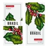 Sistema de café Rama exhausta del café de la mano Icono grabado coloreado vector Diseño de empaquetado en estilo brutal Plantilla ilustración del vector