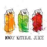 Sistema de cajas del cartón con el zumo de fruta stock de ilustración