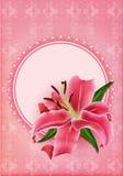 Sistema de cartes cadeaux hermosos con el lirio rosado Fotos de archivo libres de regalías