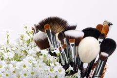 Sistema de cepillos del maquillaje con las flores pamplina Fondo blanco Foto de archivo