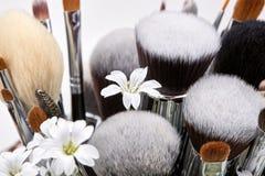 Sistema de cepillos del maquillaje con las flores pamplina Fondo blanco Imagen de archivo