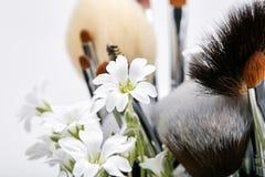 Sistema de cepillos del maquillaje con las flores pamplina Fondo blanco Fotos de archivo