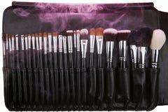 Sistema de cepillos del maquillaje en el caso de cuero Humo rosado Aislado blanco Imagen de archivo