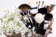 Sistema de cepillos del maquillaje en pesebre con las flores pamplina Backgr blanco Fotografía de archivo libre de regalías