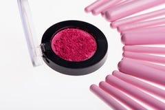 Sistema de cepillos rosados profesionales del maquillaje Fotografía de archivo libre de regalías