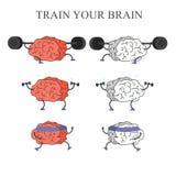 Sistema de cerebros del tren Fotografía de archivo