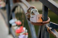 Sistema de cerraduras de la boda Cerraduras cerradas de diversos formatos imagen de archivo libre de regalías