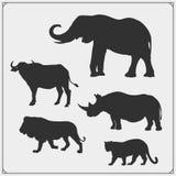 Sistema de cinco siluetas grandes de los animales León, elefante, rinoceronte, leopardo y búfalo ilustración del vector