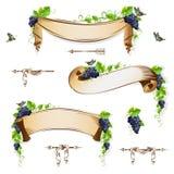 Sistema de cintas del vintage con las uvas stock de ilustración