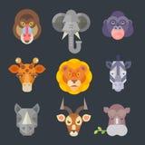 Sistema de color animal africano del icono Fotografía de archivo libre de regalías